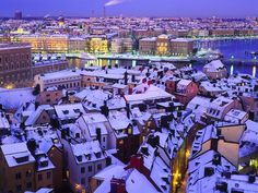 stockholm - Google Search