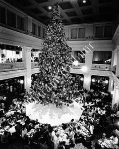 Remembering Marshall Field's: Top 10 Favorite Marshall Field's Traditions -- The Christmas tree in the Walnut Room