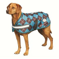 Weatherbeeta Parka 600D Dog Coat by Weatherbeeta. $31.49. Strong 600 Denier Diamond Weave outer Waterproof and breathable Nylon lining with 220g of Polyfill Touch tape chest & belly closure. Weatherbeeta Parka 600D Dog Coat is Very strong, fully waterproof and breathable polyester outer shell that features reflective night vision stripes. Contains medium warmth 220g polyfill. Features touch tape chest and surcingle closure.
