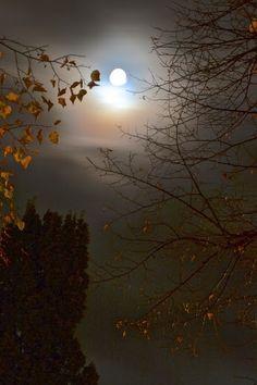 October full moon | Kina Rehder
