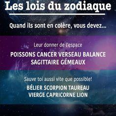 The Science And Art Of Astrology Astrology Capricorn, Astrology Chart, Astrology Signs, Astrology Houses, Describing Characters, Spiritual Connection, Tarot Card Decks, Zodiac Star Signs, Tarot Reading