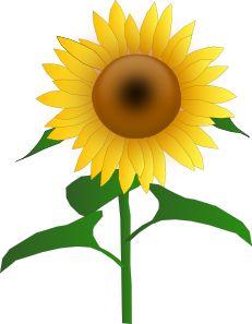 sunflower border clip art sunflowers clip art images sunflowers rh pinterest com sunflower clipart transparent sunflower clip art borders