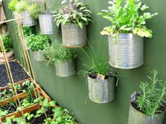 recycled container herb garden wall A vertical garden doean't have to be in pockets! Vertical Gardens, Small Gardens, Outdoor Gardens, Mini Gardens, Vertical Planting, Vertical Farming, Container Herb Garden, Diy Herb Garden, Herb Gardening