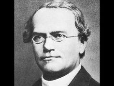Ciencia Escolar - Trabajos de Gregor Mendel [Biología]