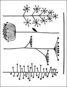 Artemio leimasinsetti - Modern Grasses