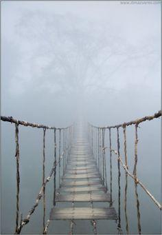 Uit de mist je eigen weg vervolgen