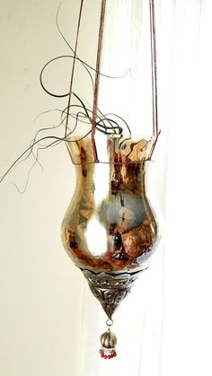 """Tillandsia butzii in a stone filled glass hanging aerium. Glass vessel is 9"""" from top lip to bottom I hook and 4 3/4"""" across at its widest. Overall hanging height is 33"""" but easily adjusts to shorter. Kit includes:  1 Tillandsia butzii  Glass vessel with pendant  100% Hemp custom plant hanger  Stone filler  Complete care and set-up instructions  Tillandsia are the perfect low maintenance, no mess, naturally air purifying and aura boosting addition to your space. They do not require soil…"""
