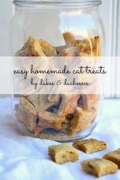 an easy homemade cat treats recipe for your favorite feline