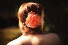 Bijou de tête / Bijou de cheveux / Broche / Barrette mariage /Parure de cheveux / Fleur soie Rose Corail