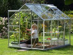 Lähiruokaa omasta kasvihuoneesta.