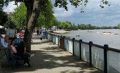 Thames Footpath Putney