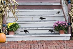 Black Bird vinyl Wall Decals - Primitive Crow wall art stickerss OFG French Country home decor