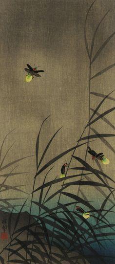 'Fireflies' (c.1930) by Japanese artist & printmaker Ohara Koson (1877-1945). via ukiyo-e gallery