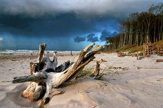 Die Ostsee-Halbinsel im Winter-Check: 9 wärmende Tipps für den Darss - TRAVELBOOK.de