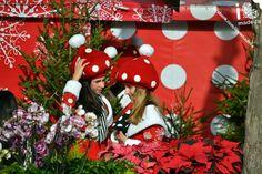 FESTAS DE NATAL E FIM DO ANO – FESTAS DA MADEIRA 2013   Foto Fátima Gonçalves. Envia-nos as tuas fotos de Natal para o nosso email, nós partilhamos com o Mundo!   www.ilovemadeira.org/ • www.facebook.com/ILoveMadeira
