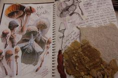 Ellisha Willis DHSFG Textiles