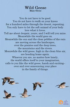 Read this inspirational poem by Mary Oliver about announcing your place in life.