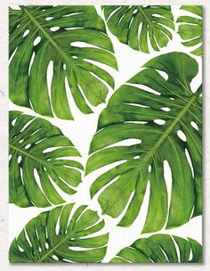 ChezMax Wall Art Oil Painting on Canvas Print Artwork Pictures for Home Decor Green Tropical Plants Palm Leaves X Posters & Prints Plant Painting, Plant Drawing, Plant Art, Canvas Artwork, Oil Painting On Canvas, Artwork Prints, Poster Prints, Motif Jungle, Green Paintings