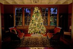Just another stunning #ChristmasTree at the @jekyllclub in Cherokee photographed by @peacockphotos