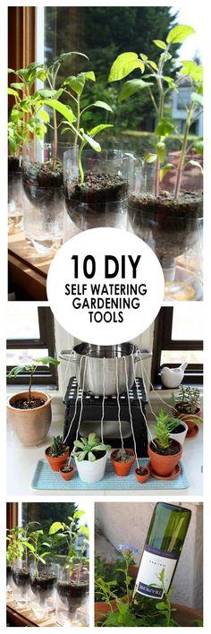 Indoor Gardening, Gardening Self Water, Self Water Gardening Tips, DIY Self Watering, Self Watering Hacks, DIY Gardening, DIY Gardening Hacks, Gardening Tips and Tricks, Popular Pin, Gardening 101, Gardening Tips.