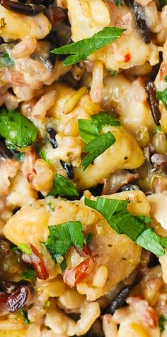 Creamy Parmesan Chicken & Wild Rice - easy, gluten free, stove-top recipe.