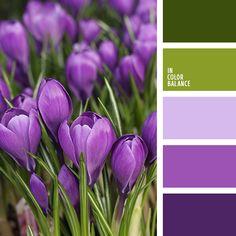 #purple #green #color