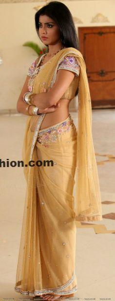 shriya saran in net sari