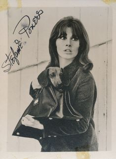 Stefanie (Stephanie) Powers signed by hand 3 x B:W photograph Golden Age Of Hollywood, Hollywood Stars, Classic Hollywood, Spy Shows, Old Tv Shows, Tammy Tell Me True, Gidget Goes Hawaiian, The Girl From Uncle, Stephanie Powers