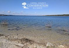 was November and it was absolutely gorgeous at Canyon Lake in Texas Hill Country! CCCA is trying to preserve the natural beauty of places like this. Canyon Lake, E Day, Texas Hill Country, Absolutely Gorgeous, Conservation, Preserve, Natural Beauty, November, Wildlife