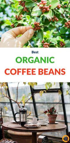 13 Best Organic Coffee Brands of 2020 , Coffee Club, Coffee Milk, Coffee Pods, Coffee Beans, Espresso Coffee, Coffee Shop, Coffee Lovers, Coffee Maker, Organic Coffee Brands
