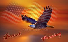 Image result for 4th of july wallpaper hd Bald Eagle Pictures, 4th Of July Wallpaper, G Morning, Movie Posters, Holidays, Art, Image, Art Background, Holidays Events