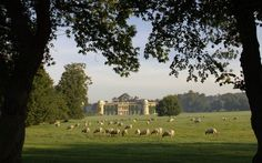 Goodwood House in Sussex - England