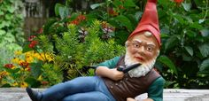 Gnome Magic | Offbeat attractions - Unusual attractions and days out in the UK (South East)