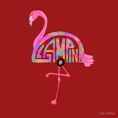 Image result for flamingos