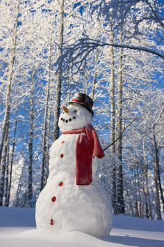 Snowman With Red Scarf And Black Top Hat in Eagle River, Alaska : photograph by Kevin Smith