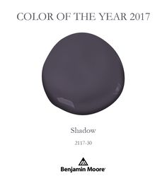 An allusive participant in a theater of light. Our Color of the Year 2017 is Shadow 2117-30.