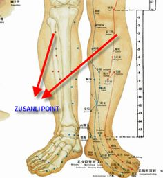 Zusanli - ST Effects: Increases stamina and energy. Provides stability and grounding. Heals effects on the body of too much worrying and thinking. Alternative Therapies, Alternative Health, Alternative Medicine, Body Therapy, Massage Therapy, Ideal Weight Loss, Point Acupuncture, Increase Stamina, Acupressure Points