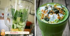 Lemon-Ginger-Avocado Breakfast Smoothie to Effectively Burn Fat, Fight Cancer and Remove Heavy Metals