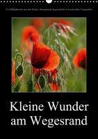 """""""Kleine Wunder am Wegesrand"""" (2017)"""