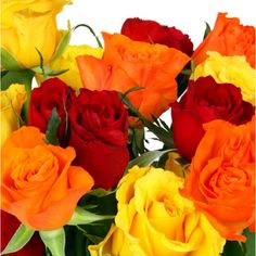 Roses...assorted colors