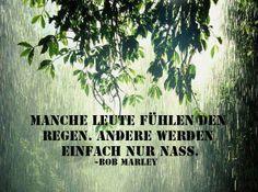 'Manche Leute fühlen den Regen. Andere werden nur nass.' - Bob Marley ~