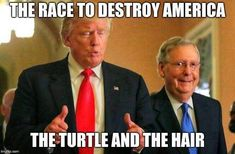 Republican race to deconstruct America. The tortoise and the hair. Political Satire, Political Cartoons, Trump Cartoons, Mitch Mcconnell, Truth Hurts, Republican Party, Donald Trump, Presidents, Shit Happens
