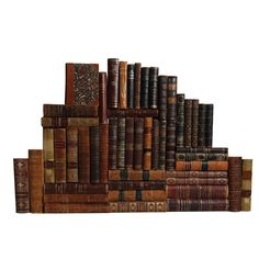 Booth & Williams Leather Libraries by the Foot Authentic Decorative Book | Perigold