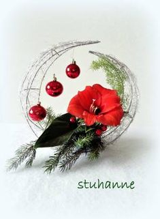 Blog de stuhanne - Skyrock.com