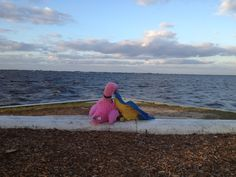 Patsy and Paulie enjoyed the beautiful view of Charlotte Harbor from Laishley Park in Punta Gorda, Florida