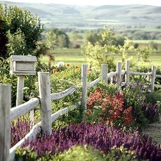 A simple rustic fence and plants native to your region can create a beautiful, low-maintenance garden.