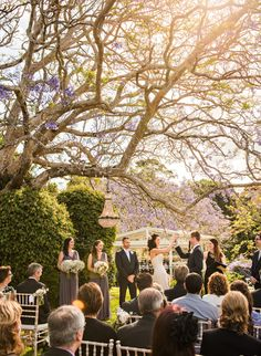 Spicers Clovelly Estate Country Wedding Renee and Daniel Country Estate, Sunshine Coast, Most Romantic, Backdrops, Wedding Venues, Reception, Weddings, Photography, Beautiful