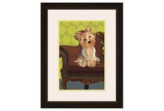 Sitting Yorkie on OneKingsLane.com