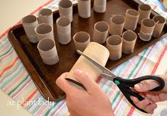 If you start seeds in toilet paper rolls, you can plant the seedlings with their…