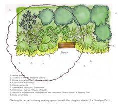 Design based on the Milky Way Garden Pinterest Native